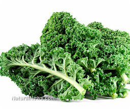 Five practical ways to add kale to your diet - Natural News | Hospitality | Scoop.it