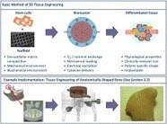 Bioreactor engineering of stem cell environments | Stem Cell Technology | Scoop.it