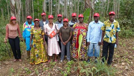 Les artistes africains chantent pour soutenir l'agriculture   Questions de développement ...   Scoop.it