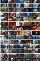 The Tree of Life | VIM | Scoop.it