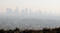 LA smog: more cows than cars? | Vertical Farm - Food Factory | Scoop.it