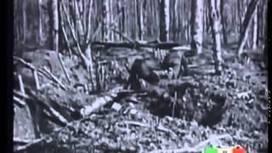 La Grande Guerra: storia della prima guerra mondiale in 11 puntate - YouTube | AulaWeb Storia | Scoop.it