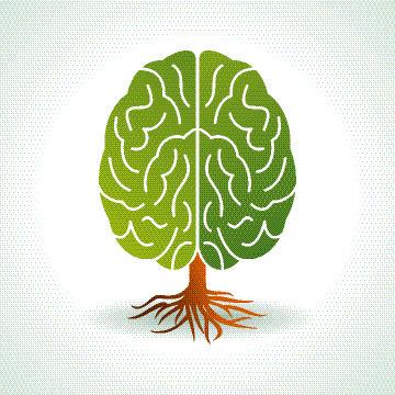 Bionisch trainieren | Weiterbildung | Scoop.it