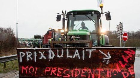 Agriculture: une crise qui perdure et s'étend - L'Express   Le Fil @gricole   Scoop.it
