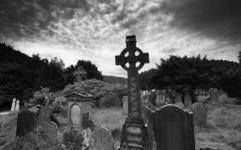 Los 7 pasos para que tu web deje de ser un cementerio   GS Consulting. Internet   Scoop.it