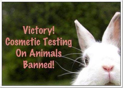 Timeline Photos - Freedom for Farmed Rabbits | Facebook | Animals R Us | Scoop.it