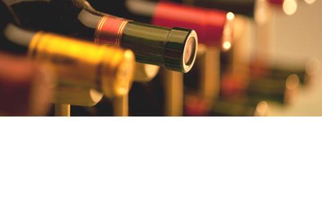 Food & Wine Pairing Basics | BottleSeeker.com | Food & Wine Pairing with Whites, Rosés & Reds from Bordeaux & Bordeaux Supérieur | Scoop.it