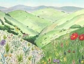 Torricchio, la montagna magica capace di raccontare mille storie   La Stampa   Le Marche un'altra Italia   Scoop.it
