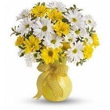 Upsy Daisy | toronto flowers | Scoop.it