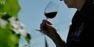 Les différents (mauvais) goûts du vin - Le Figaro L'Avis du Vin   vin et société   Scoop.it