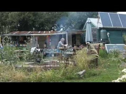 The Oldest Food Forest in Britain | Permaculture Design | Scoop.it