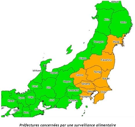 Point Informations pour les résidents français au Japon | IRSN | Japon : séisme, tsunami & conséquences | Scoop.it