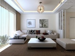 Apartments ceiling designs   dog breeds   Scoop.it