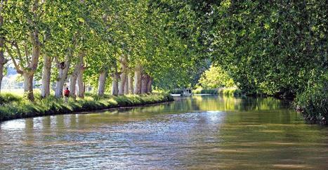 Sur le canal du Midi, dans l'Hérault - Routard.com | tourisme canal du midi | Scoop.it