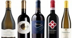Umani Ronchi Le Marche: quintessentially Italian | Wines and People | Scoop.it