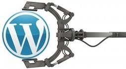 Wordpress Developers in India, Wordpress Experts Company for Web Portal Designing | Designz Plaza | Web Development and Internet Marketing | Scoop.it