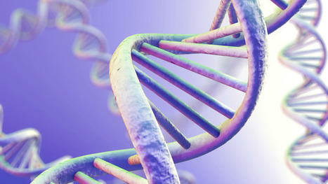 More IP concerns for genetic resources | Folklore Today | Scoop.it