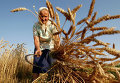 Russia: Food crisis looms | Food Security | Scoop.it
