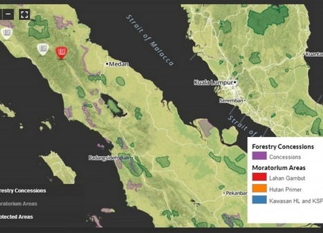 Environmental visualizations of 2014 to remember in 2015   #GoogleMaps   Scoop.it