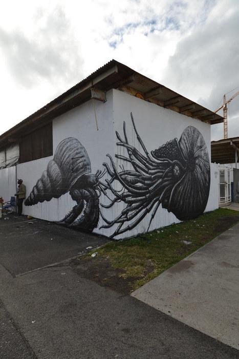 HAWAII | World of Street & Outdoor Arts | Scoop.it