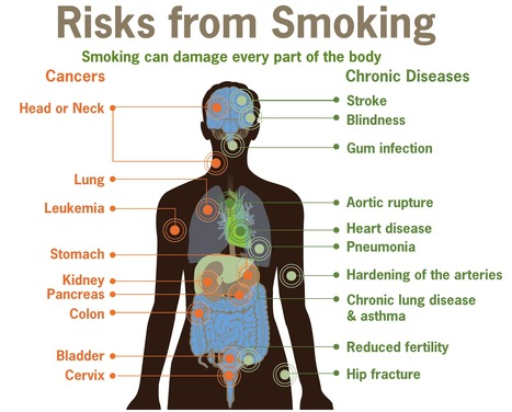 Cigarette Smoking: The Side Effects of Nicotine | Addiction | Scoop.it