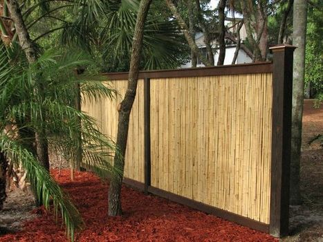 Natural Bamboo Fencing | Sunset Bamboo | Scoop.it