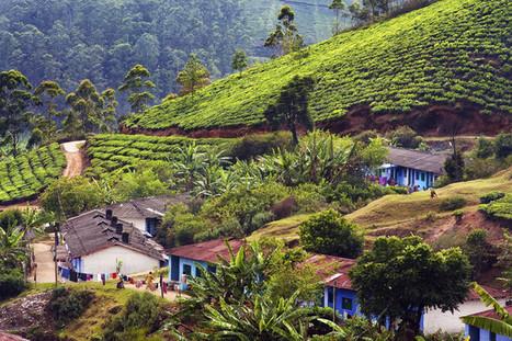 L'Inde, laboratoire du système D écologique | Les colocs du jardin | Scoop.it