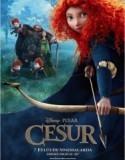 Cesur / Brave 2012 Türkçe Dublaj izle   Film izle film arşivi   Scoop.it