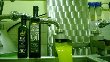 CretaVita - from Crete with Love: Greek Olive Oil: Cultural review olive oil | CretaVita Extra Virgin Olive Oil Producer #OliveOil #EVOO | Scoop.it