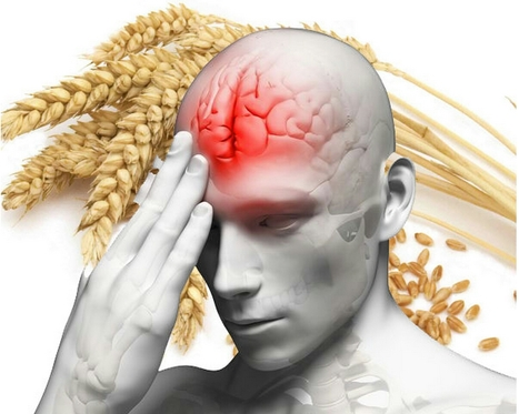 'Gluten Brain': Wheat Cuts Off Blood Flow To Frontal Cortex | Healing Chronic Pain & Disease | Scoop.it