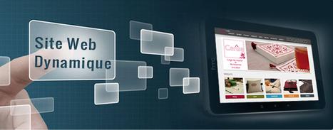 CRESUS: Agence de développement des sites web   Cresus web   Scoop.it