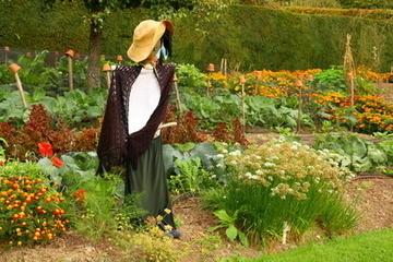Cr er un pouvantail pour votre p - Creer un jardin potager ...