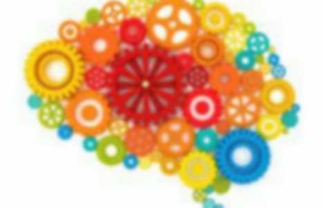 le cerveau   Apprentissage et numérique éducatif en EPS   Scoop.it