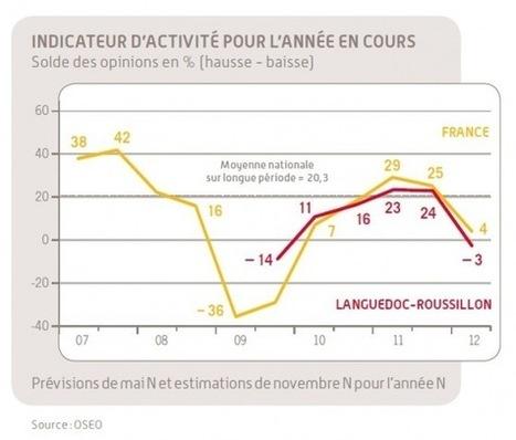 La conjoncture des PME en Languedoc Roussillon [OSEO, juillet2012]   Languedoc Roussillon : actualité économique   Scoop.it