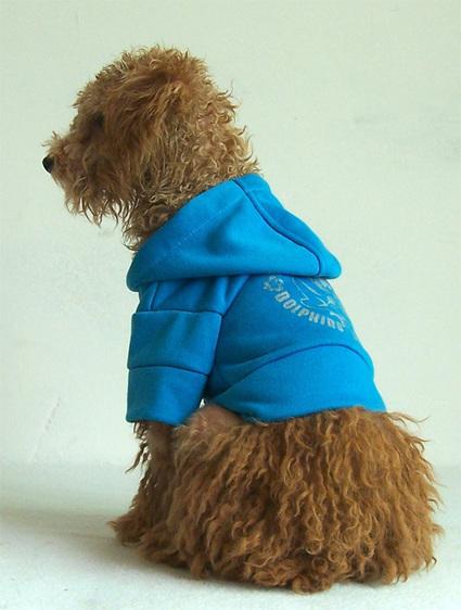 Fashion Leisure Print Outfit – PetSuperDeal.com | petsuperdeal | Scoop.it
