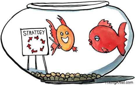 Comment construire une stratégie digitale ? | transition digitale : RSE, community manager, collaboration | Scoop.it
