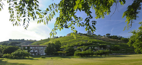 The Georges Vernay estate, featuring the manor house and the Condrieu vineyards.   Vitabella Wine Daily Gossip   Scoop.it