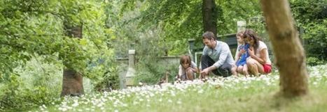 Réserver tôt pour économiser sur votre séjour à Center Parcs | Actu Tourisme | Scoop.it