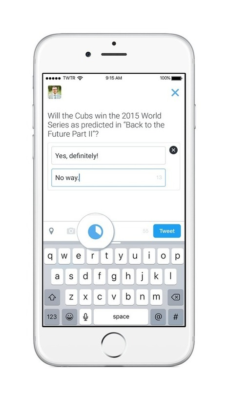 Twitter (Officially) Launches Polls | Social Media and Digital Publishing | Scoop.it