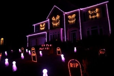What The Fox Say Halloween Lights (Video) - Daily Picks and Flicks | dogs and the dog family | Scoop.it