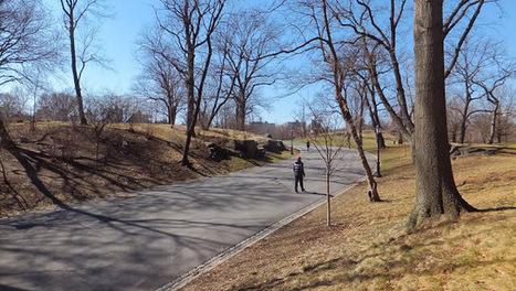 Central Park, para pasar un domingo diferente en New York! | Universo de Viajes | Scoop.it