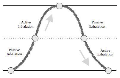 Natural Arts Center » Blog Archive » 8 part breath cycle - | Breathwork | Scoop.it