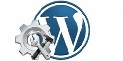 Pourquoi choisir le CMS WordPress pour votre site Web ou Blog ? - Veille Web 2.0 | fans de Wordpress | Scoop.it