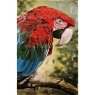 Ara parrot - Realistic Oil Painting | acrylic painting | Scoop.it