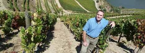 Greg Jones Turns Up The Heat on Wine & Climate Change | Vitabella Wine Daily Gossip | Scoop.it