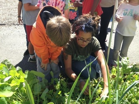 What Happens When You Teach Math in the Garden? | Civil Eats | Vertical Farm - Food Factory | Scoop.it