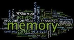 What Memory would you leave Behind? - Alzheimers Support | Alzheimer's Support | Scoop.it
