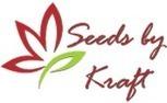 Summer Flower Bulbs, Flower seeds online purchase india | Buy flower seeds online, Flower seeds online, Garden seeds, Flower seeds, Herb seeds | Scoop.it