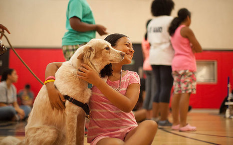 Dogs Teach Empathy, Prevent Bullying to At-Risk Youth in NYC Schools | Empathy and Animals | Scoop.it