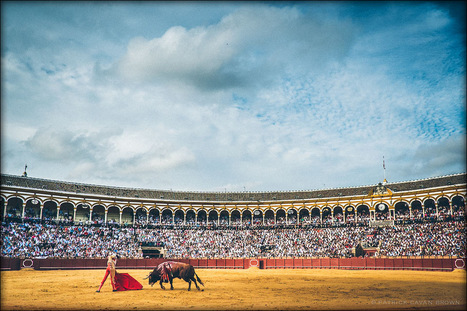X-Pro1 - Bullfight in Spain | Patrick Cavan Brown | Fuji X-Pro1 | Scoop.it